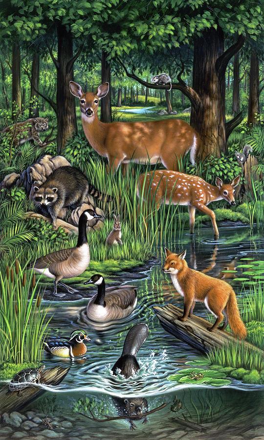 Animals Painting - Woodland by Jerry LoFaro