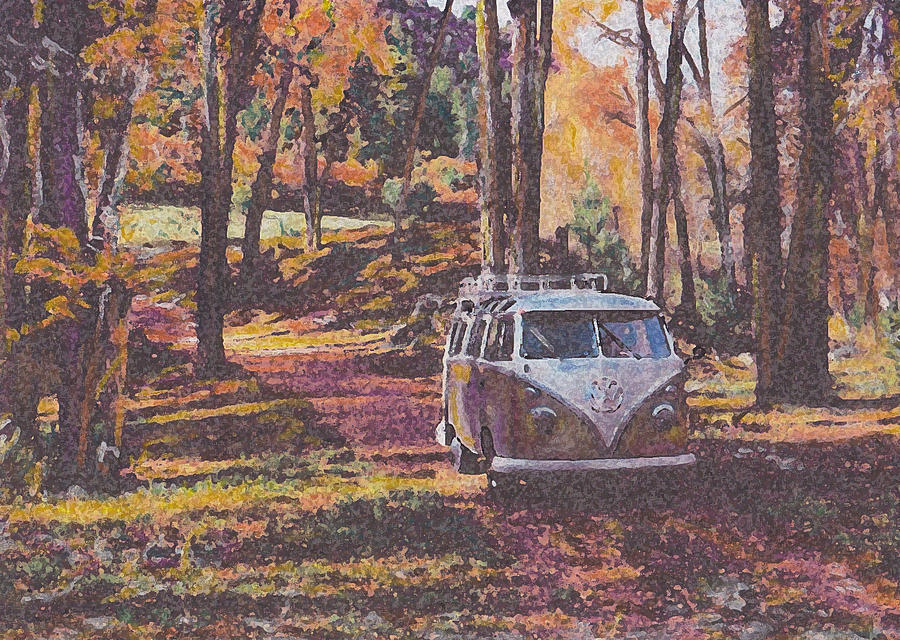 Vw Drawing - Woodland by Sharon Poulton