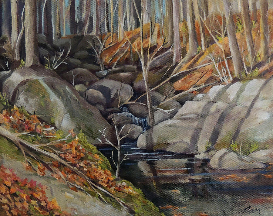Woodland Stream by Nancy Griswold