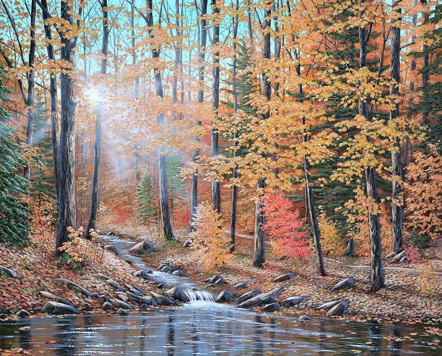Woodland Trail by Jake Vandenbrink