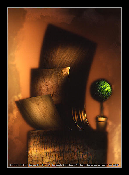 Wood Photograph - Woodscape by Ayhan Duman