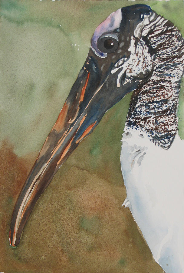 Bird Painting - Woodstork Eye by Libby  Cagle