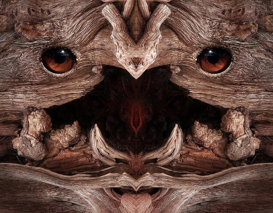 Wood Digital Art - Woody 129 by Rick Mosher