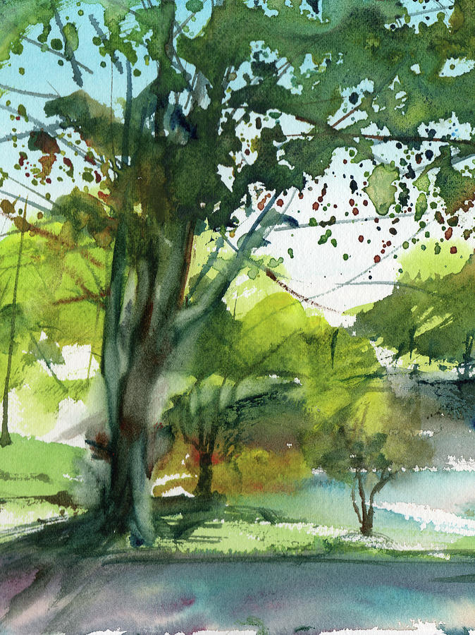 Worcester Sketchbook, Elm Park During May Vertical by Sumiyo Toribe