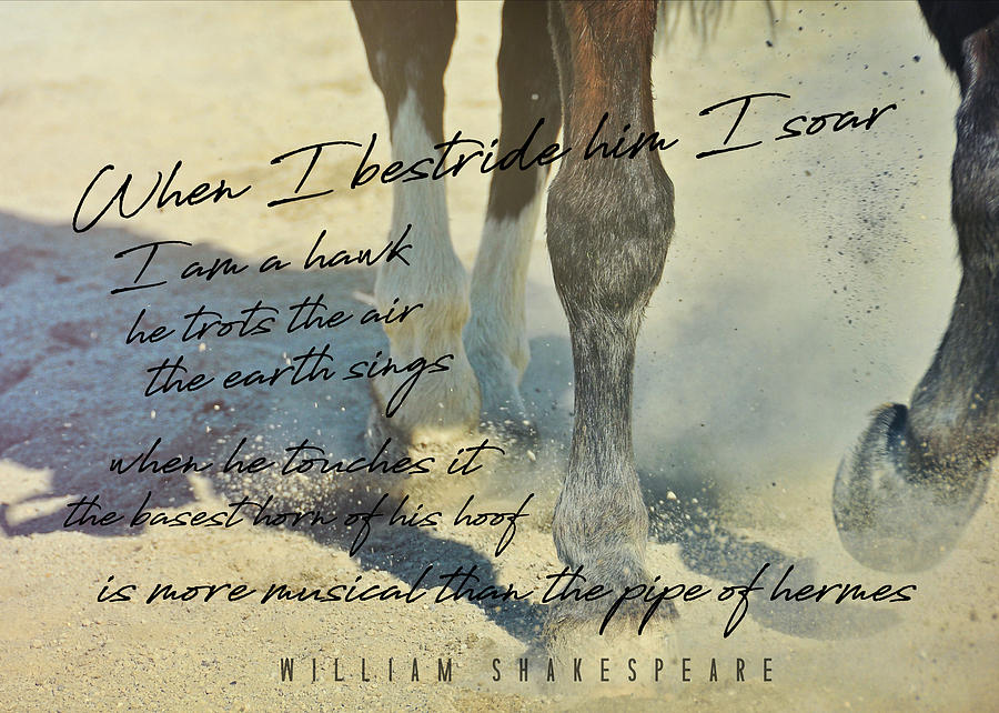 Horse Photograph - Working Tempo Quote by JAMART Photography