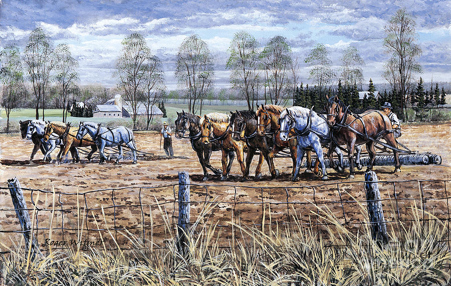 Mennonites Painting - Working Together by Roger Witmer