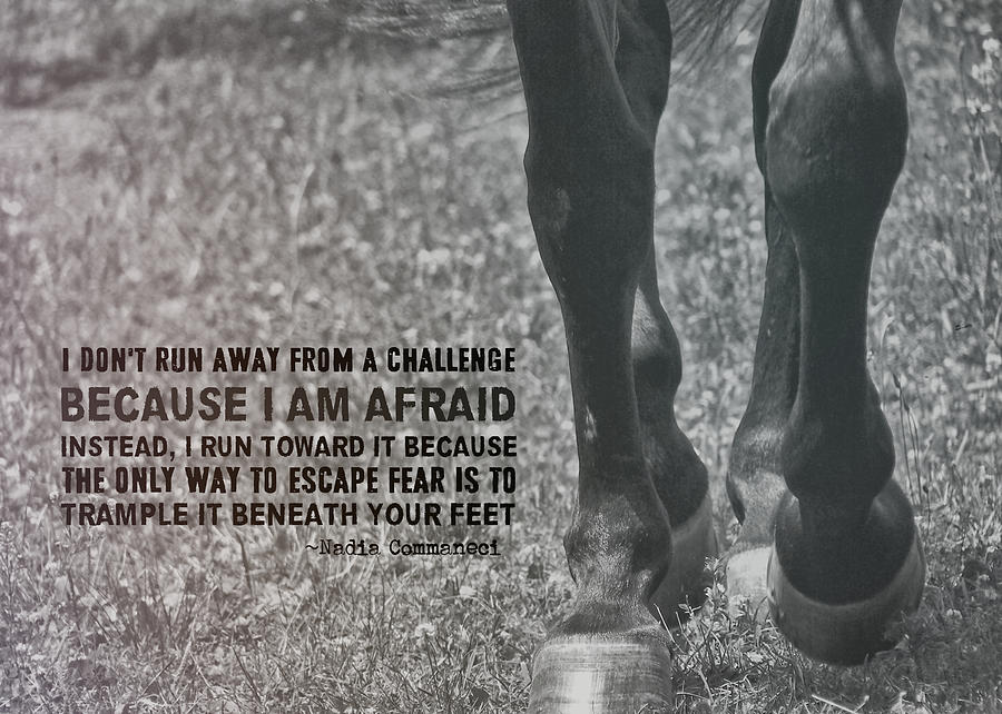 Horse Photograph - Working Trot Quote by JAMART Photography