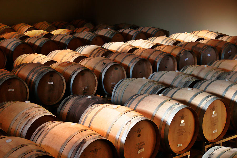 Wine Photograph - World-class Wine Is Made In California by Christine Till