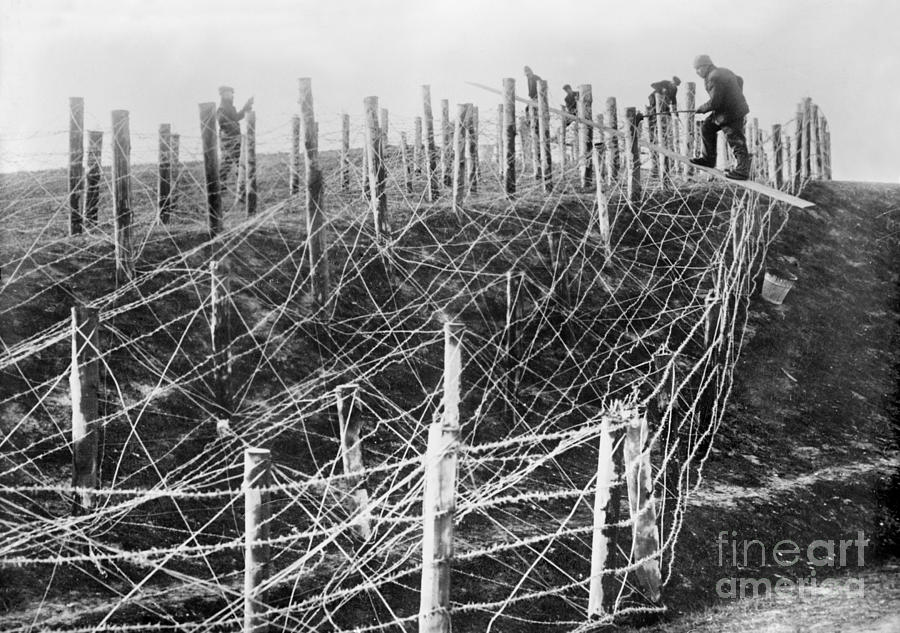 1914 Photograph - World War I Barbed Wire by Granger