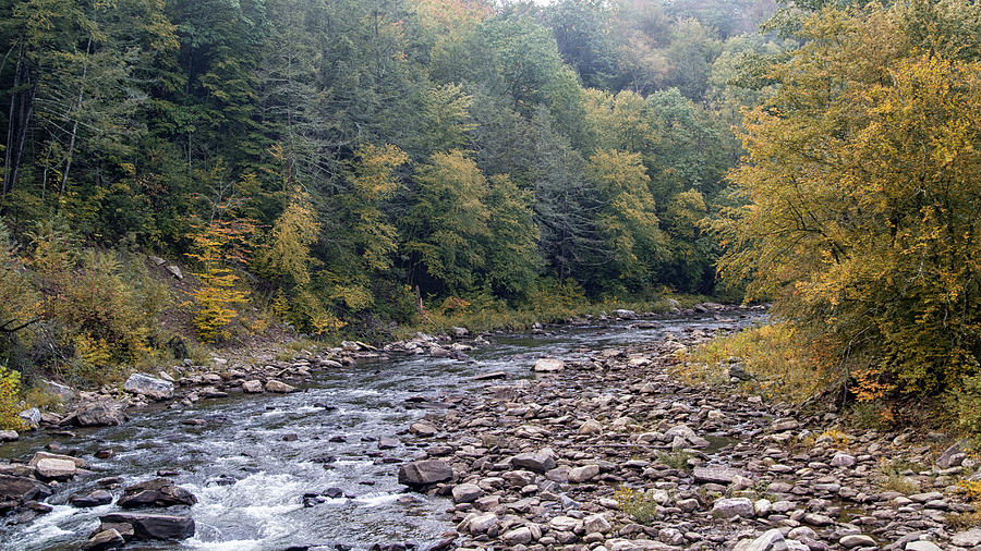 Worlds End State Park Photograph - Worlds End State Park Loyalsock Creek by Frank Morales Jr