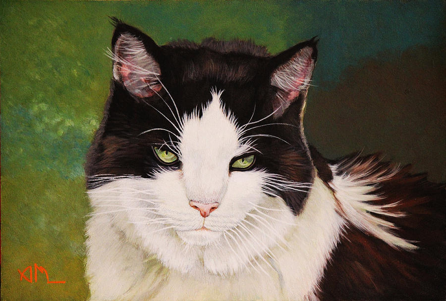 Cat Painting - Wozzle - Domestic Cat by Antonio Marchese