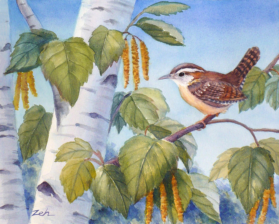 Wren in a Birch Tree by Janet Zeh
