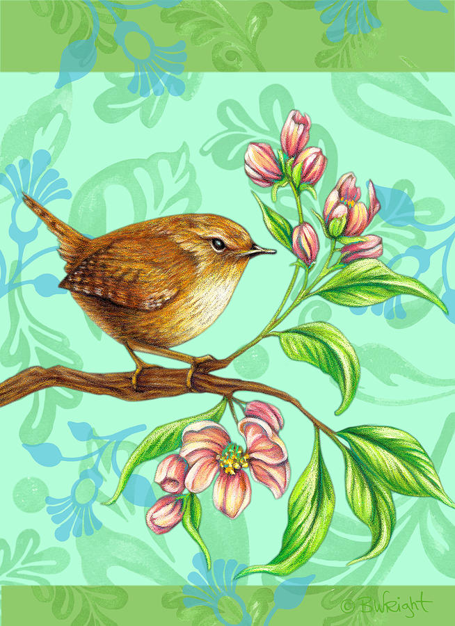 Wren on Green by Beth Wright