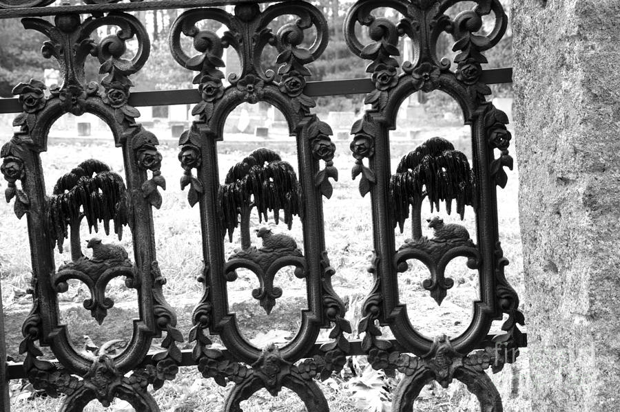 Gate Photograph - Wrought Iron Gate -west Epping Nh Usa by Erin Paul Donovan
