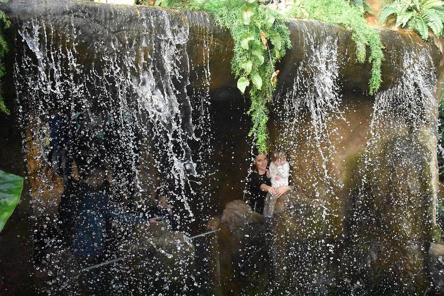 Waterfall Photograph - Wterfall by Utpal Datta