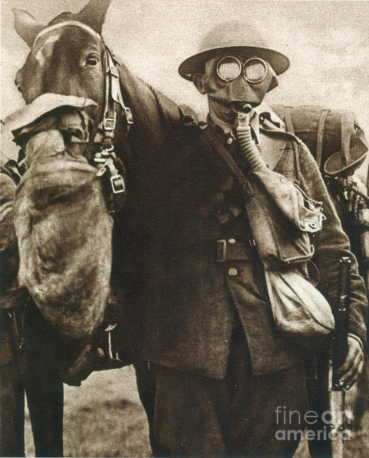 20th Century Photograph - Wwi: Gas Warfare by Granger