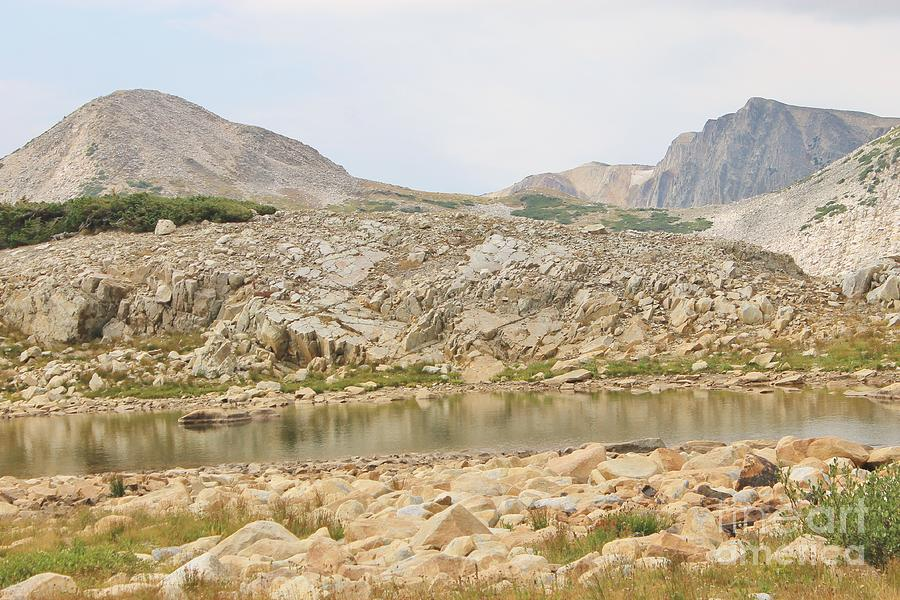 Nature Photograph - Wyoming At Altitude 4 by Tonya Hance