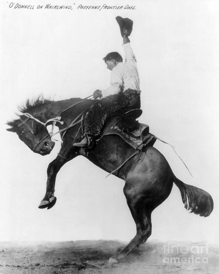 1911 Photograph - Wyoming: Cowboy, C1911 by Granger