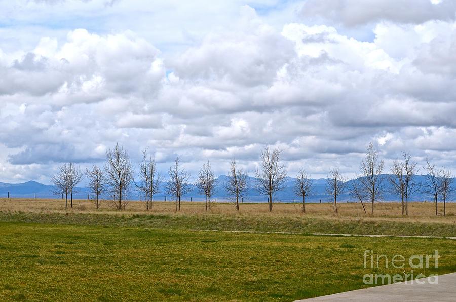 Wyoming-Dwyer Junction by Cindy Schneider