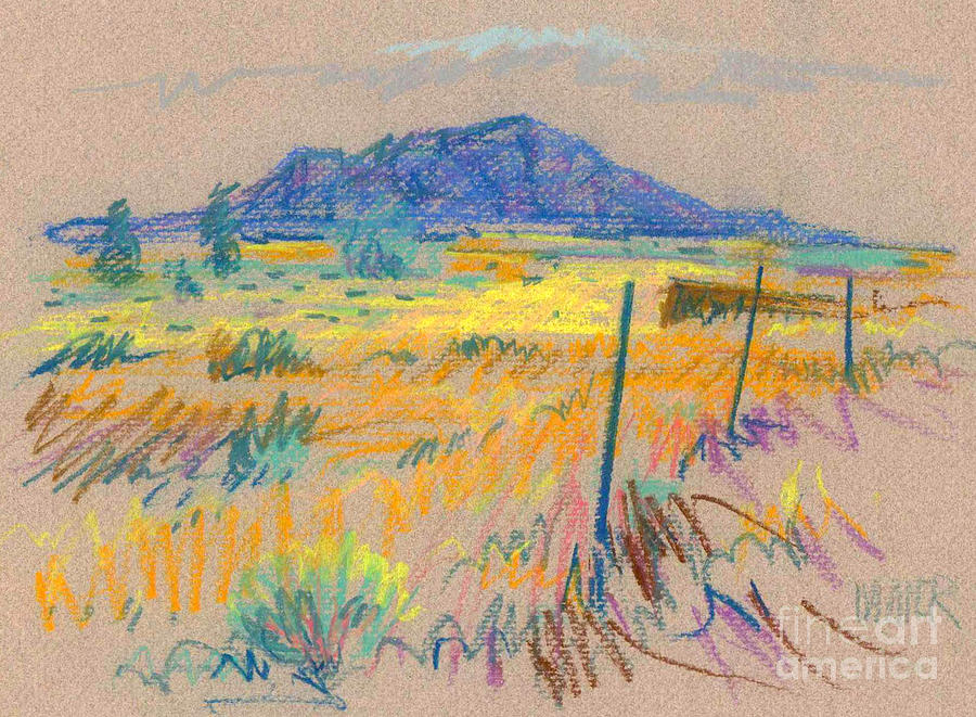 Pastel Painting - Wyoming Roadside by Donald Maier