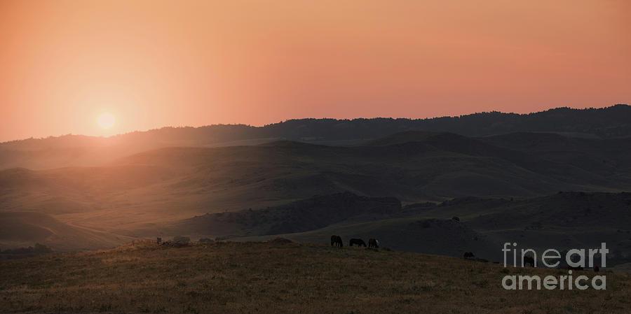 Wyoming Sunrise by Terri Cage