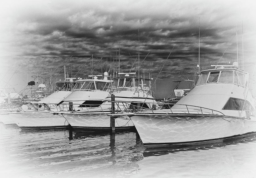 Yachts in the Marina by Brian Kinney