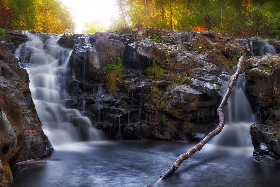 Washington Photograph - Yacolt Falls In Autumn by David Gn