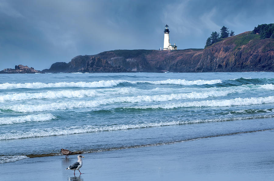 Yaquina Head Lighthouse by Harold Coleman
