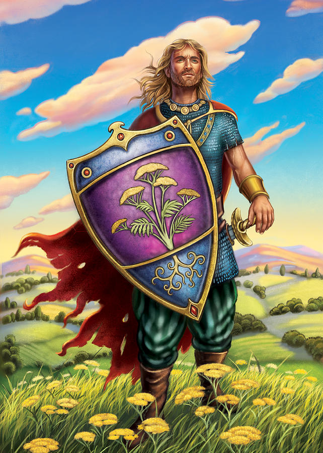 Illustration Painting - Yarrow - Protective Shield by Anne Wertheim