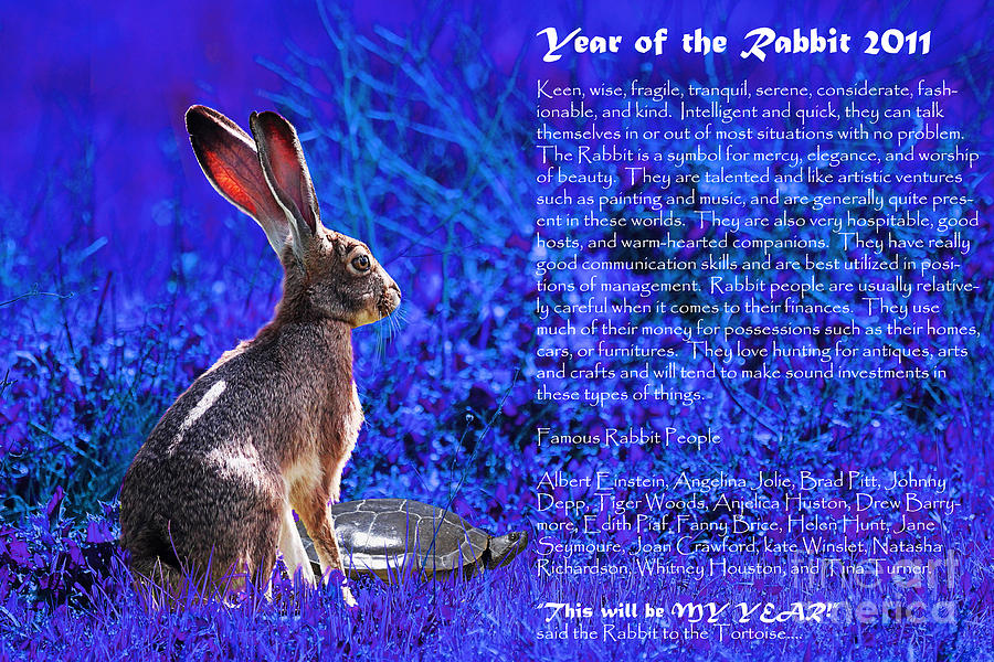 Year Of The Rabbit Photograph - Year Of The Rabbit 2011 . Blue by Wingsdomain Art and Photography