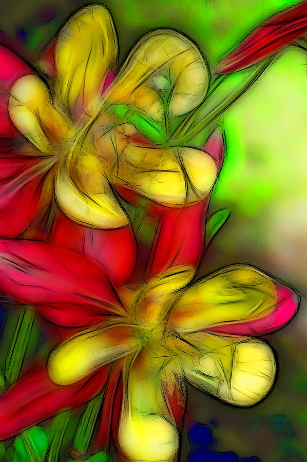 Flora Digital Art - Yellow And Red Columbines by Jean-Marc Lacombe