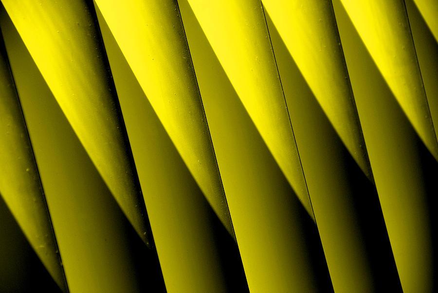 Yellow Border Photograph - Yellow Borders by Susanne Van Hulst