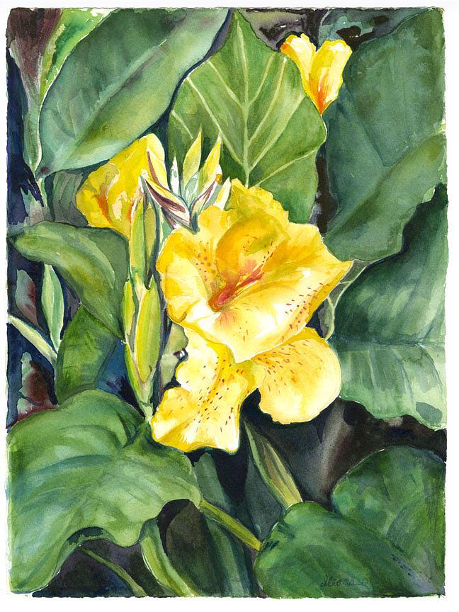 Yellow Calla Painting by Ileana Carreno