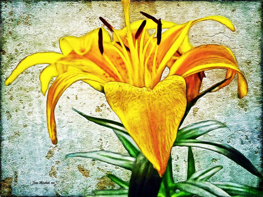 Lily Photograph - Yellow Easter Lily by Joan  Minchak