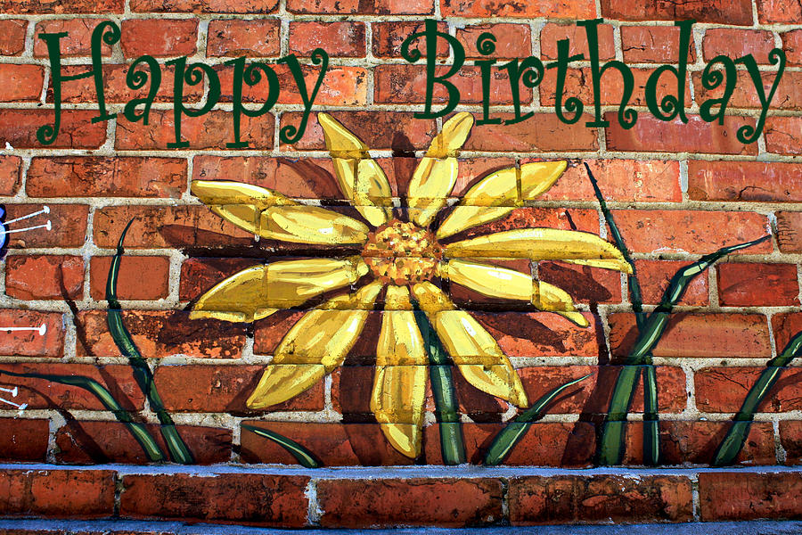 Yellow Flower-happy Birthday In Green Photograph by Selena Wagner
