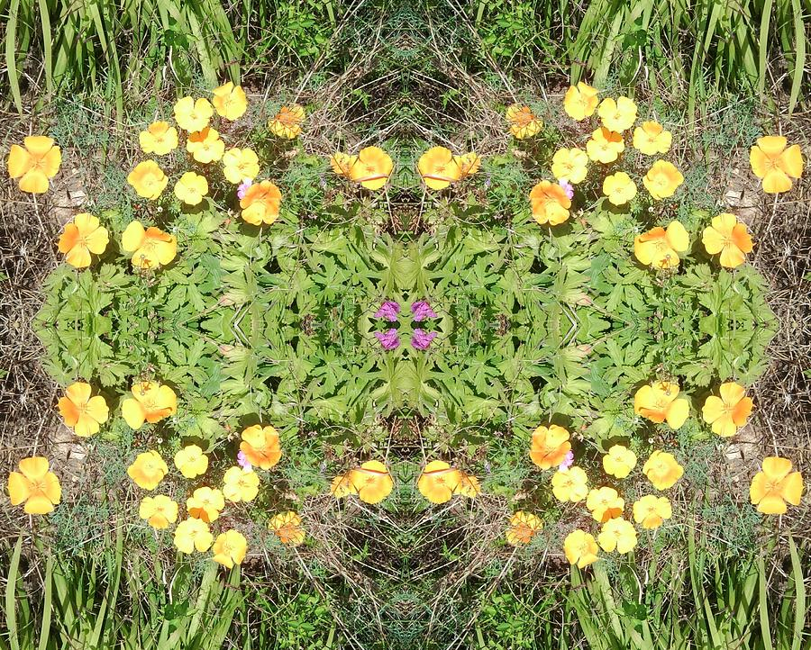 Yellow Photograph - Yellow Flower Photo 1492 Composite by Julia Woodman