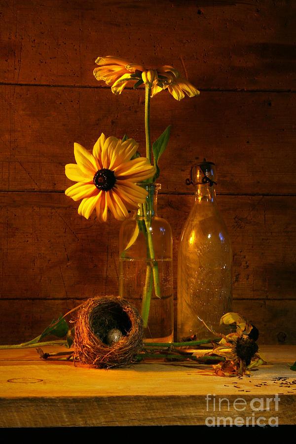 Aged Photograph - Yellow Flower Still Life by Sandra Cunningham