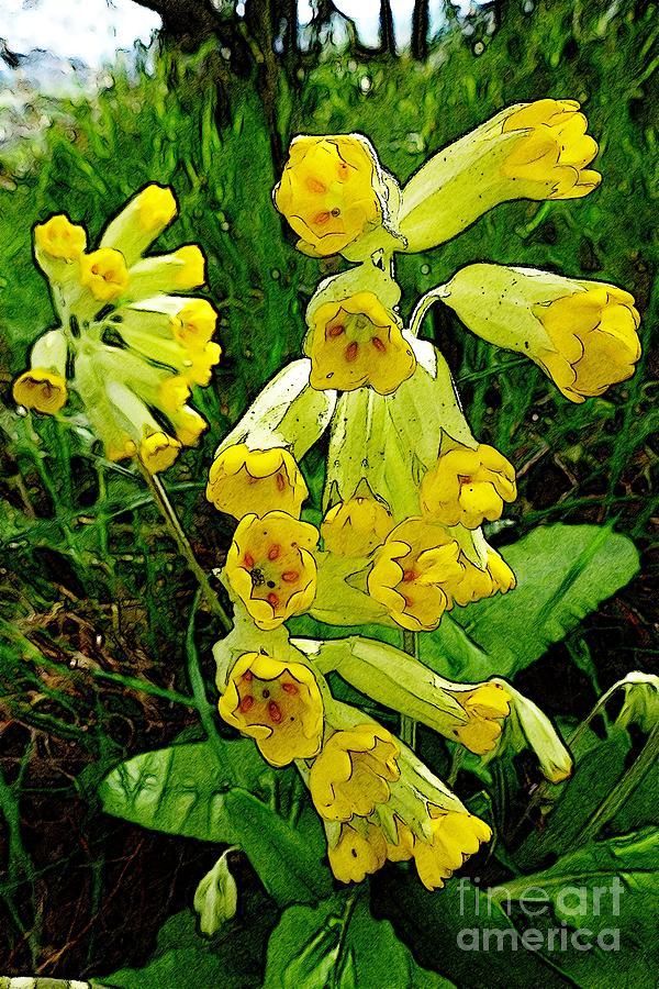 Botanical Photograph - Yellow Flowers 2 by Jean Bernard Roussilhe