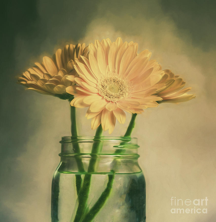 Yellow Flowers In A Jar Photograph