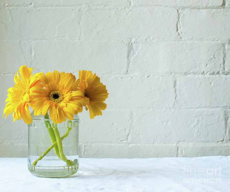 Gerberas Photograph - Yellow gerberas in glass jar by Natalie Board