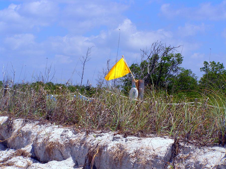 Yellow Flag Photograph - Yellow Gulf Warning Lovers Key by Christine Sullivan Cuozzo