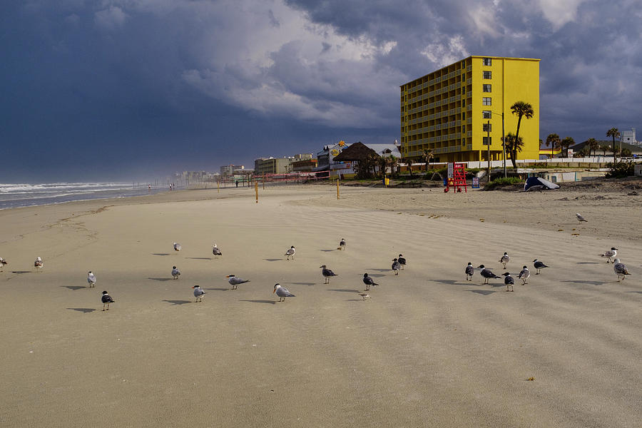 Yellow Hotel Blue Sky And Birds On Daytona Beach Florida by John McLenaghan