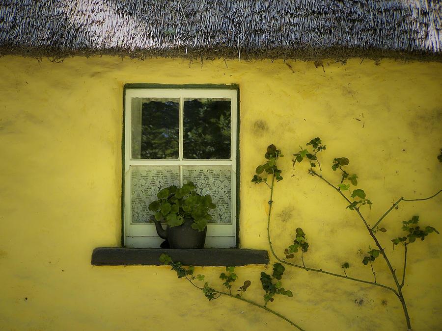 Irish Photograph - Yellow House County Clare Ireland by Teresa Mucha