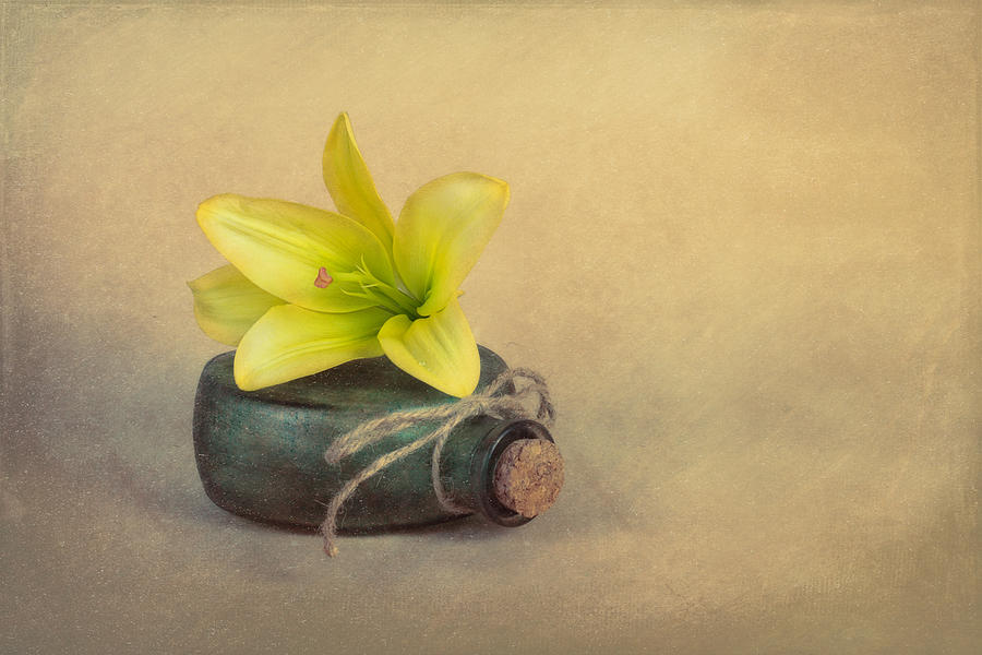 Bloom Photograph - Yellow Lily And Green Bottle by Tom Mc Nemar