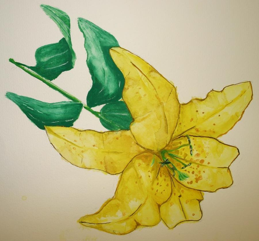 Watercolour Painting - Yellow Lily by Andrew Davies
