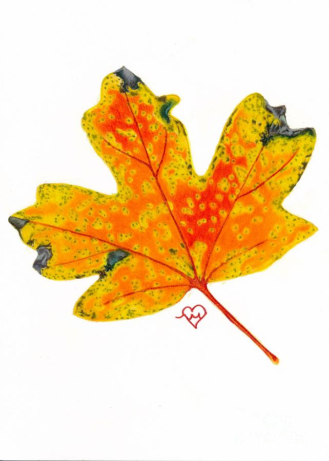 Yellow Maple by Becky Eileen Eller