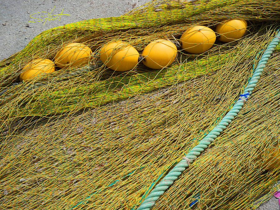 Fishing Net Photograph - Yellow On Lime by Charles Stuart