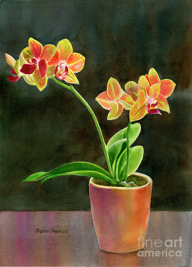 Yellow Orchid In A Pot With Dark Background Painting by ...