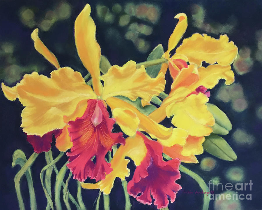Yellow Orchids by Hilda Vandergriff