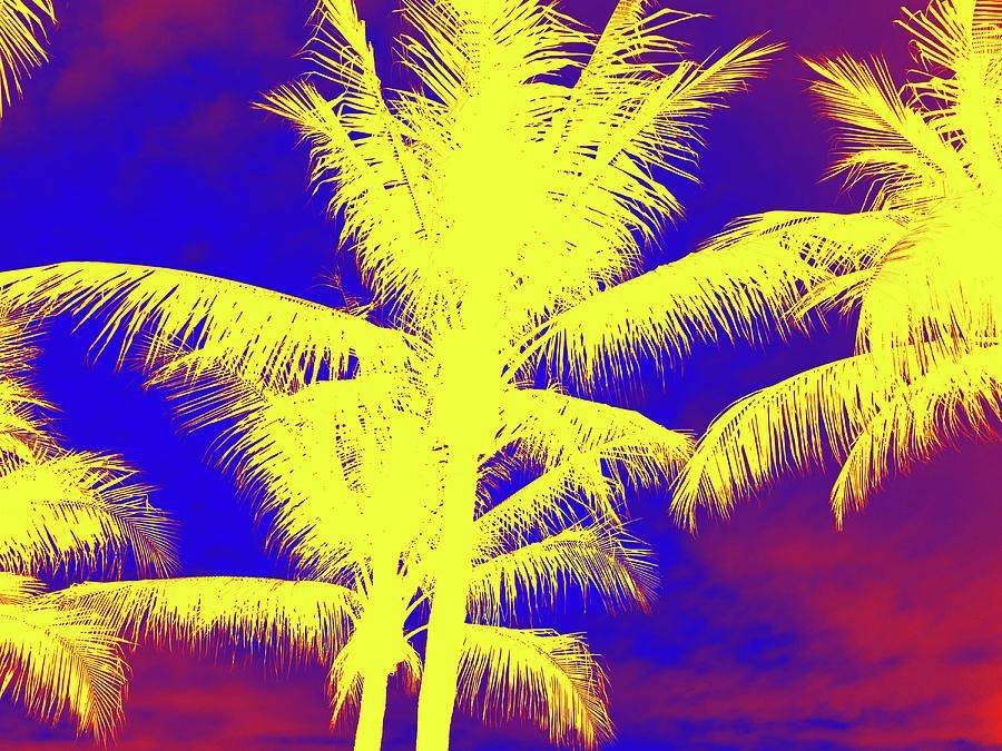 yellow palm trees digital art by irvlands artfolio